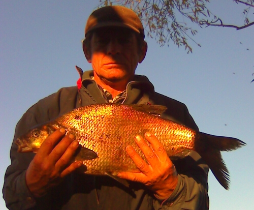 Na rzece Warcie kol. Adam Piątek złowił leszcza o wadze 2,90kg i 65cm dł.